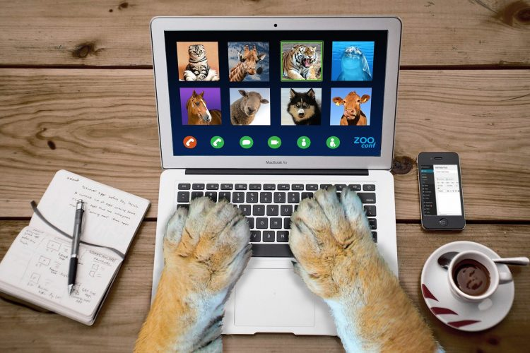 "Webinars and online learning as ""new"" digital habits"